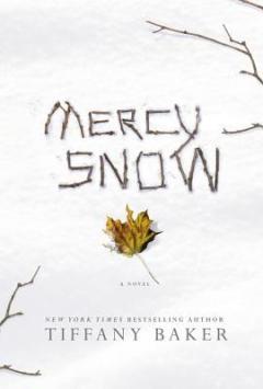 MercySnow-1